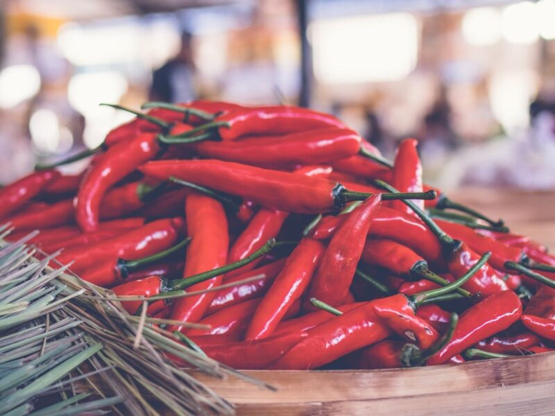 Chiliplanter: Sådan dyrker du chili om vinteren (inkl. 3 opbevaringsmuligheder)